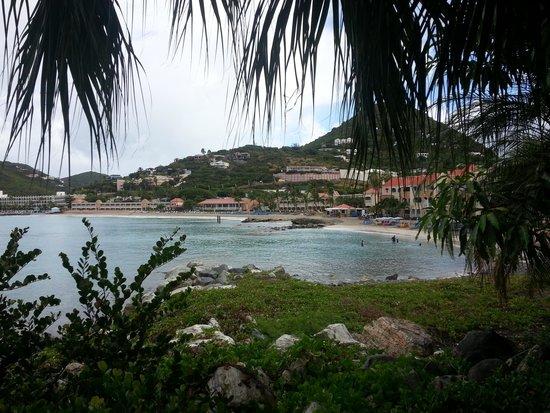 Divi Little Bay Beach Resort : playa
