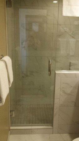 Holiday Inn Express Denver Downtown : Shower