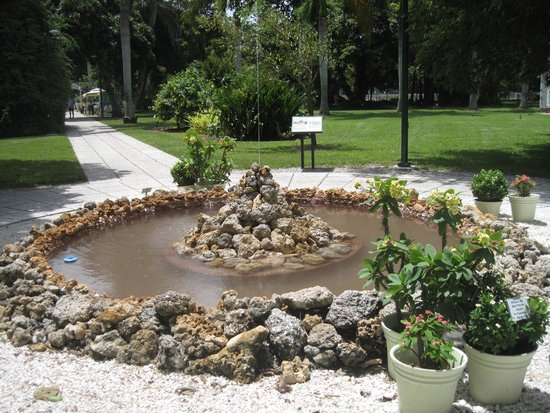 Edison & Ford Winter Estates: Fountain