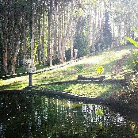 Miragua Refugios: Pequeno lago da pousada.