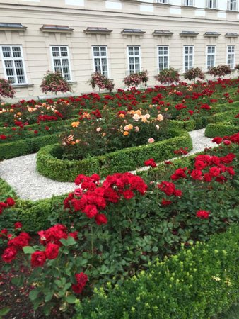 Radius Tours : Rose Garden in Salzburg