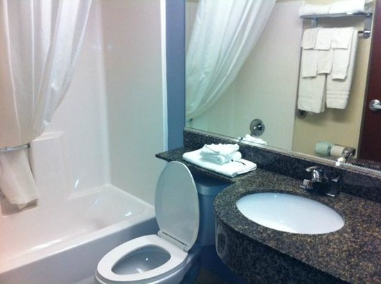 Microtel Inn & Suites by Wyndham Baton Rouge Airport: Bathroom