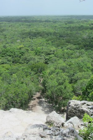 Coba Mayan Traditions: The jungle from Above
