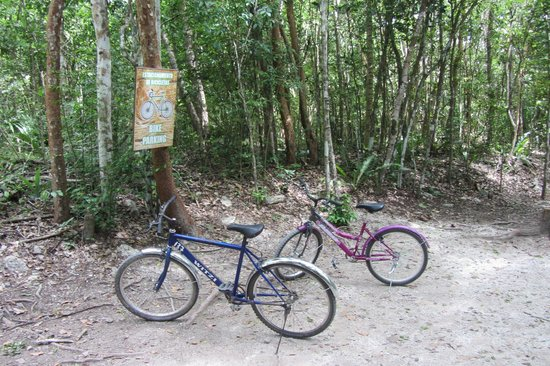 Coba Mayan Traditions: Bike parking
