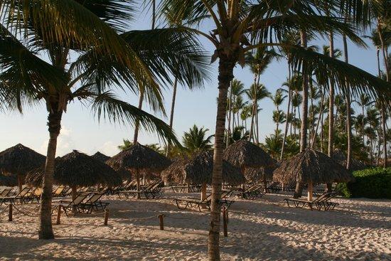 Secrets Royal Beach Punta Cana : Beach seating