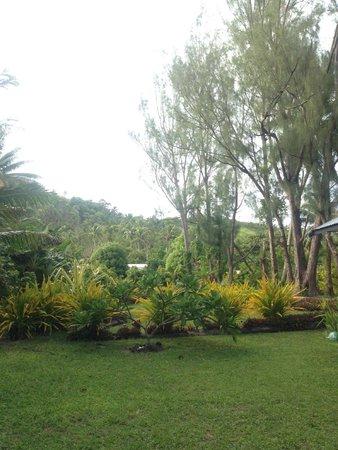 Amuri Sands, Aitutaki: garden behind the unit