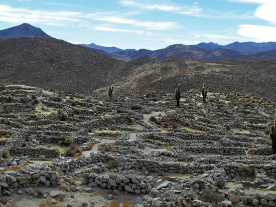 Province of Salta, Argentyna: Ruinas de Tastil 3