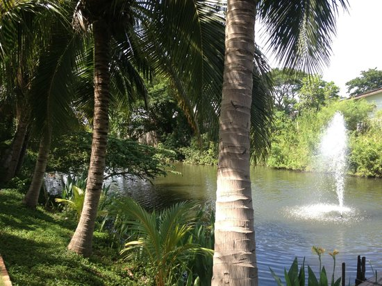 Baan Thai House : Lake next to pool and spa