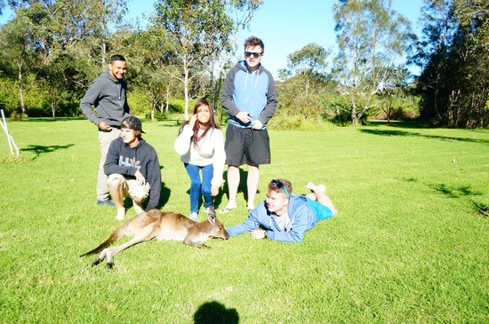 Melaleuca Surfside Backpackers: Josie and her friends