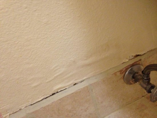Holiday Inn Express Hotel & Suites - Nacogdoches : Walls in bathroom