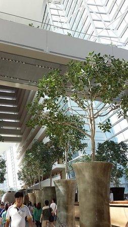 Marina Bay Sands: 1階ロビーから