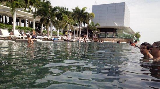 Marina Bay Sands: プール2