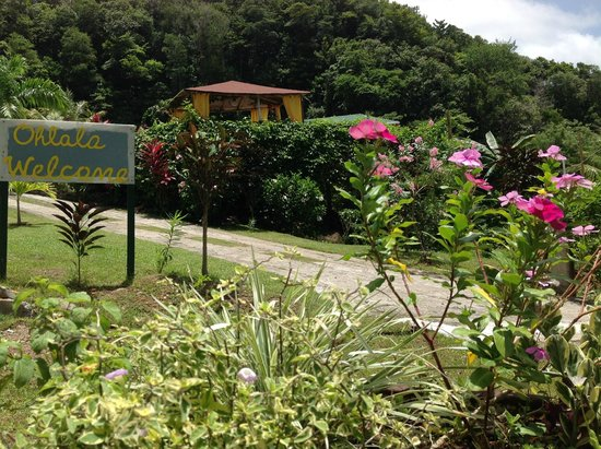 OhLaLa Villas : OhLaLa welcomes you to Dominica