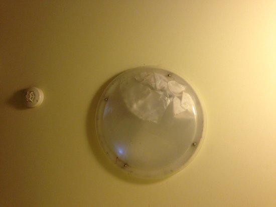 Nireeda Apartments: Filthy skylight