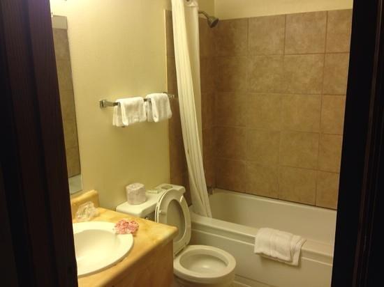 Super 8 Buffalo: clean remodeled bathroom