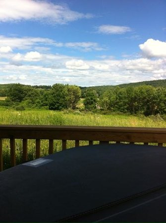 Mountain Horse Farm B&B and Wellness Retreat: View from our hot tub!