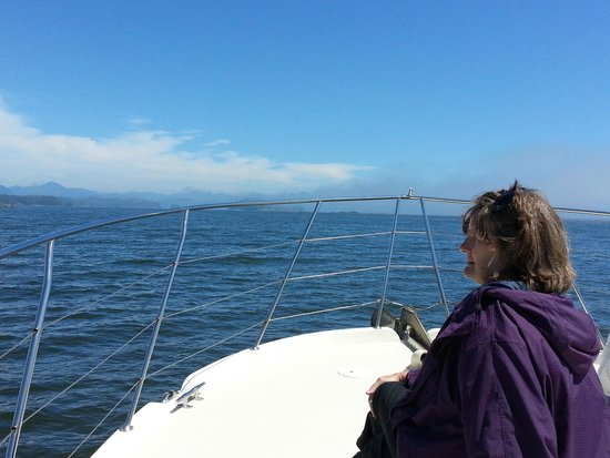 Archipelago Wildlife Cruises : Watching for whales!