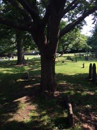 Spellbound Tours: burial ground