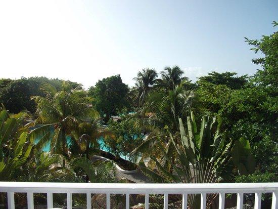 Hotel Riu Playacar : view from room