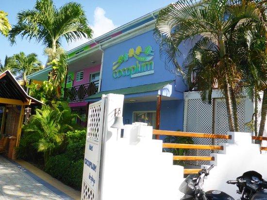 Cocoplum Beach Hotel: Llegada al hotel