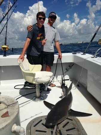 Lady Pamela II Sportfishing : SAND BAR SHARK