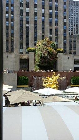 Rockefeller Center: Split Rocker