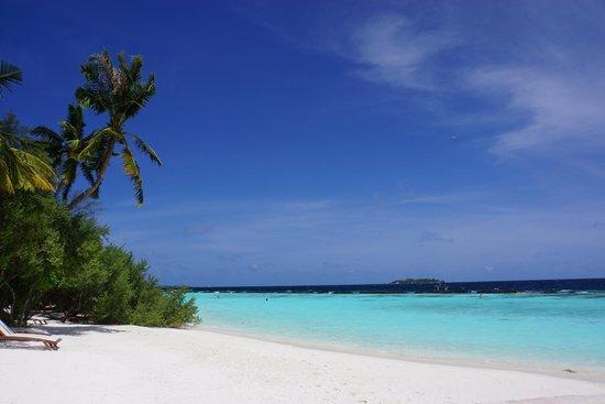 Kurumba Maldives: The Beach