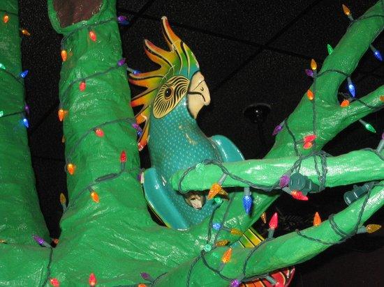 Lupi's Pizza Pies: Parrot mascot?