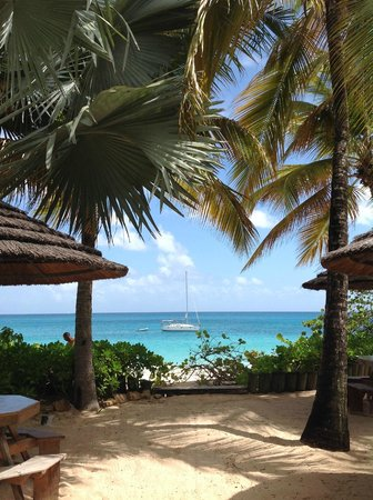Galley Bay Resort : View from barefoot grill