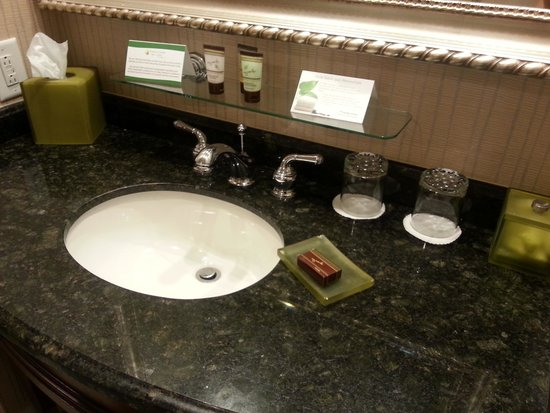 Town & Country Inn and Suites : Sink