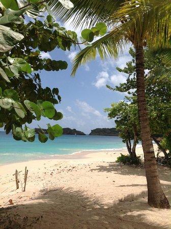 Galley Bay Resort : Grounds