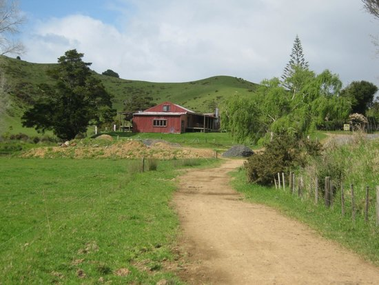 The Farm : Woolshed