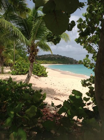 Galley Bay Resort: Grounds