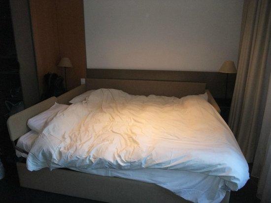 Adagio Annecy Centre : Uncomfortable sofa bed