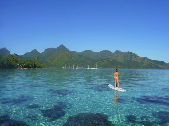 Hilton Moorea Lagoon Resort & Spa : Paddle boarding at the Hilton