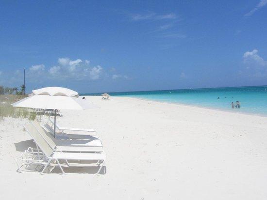 Le Vele Resort: Beach