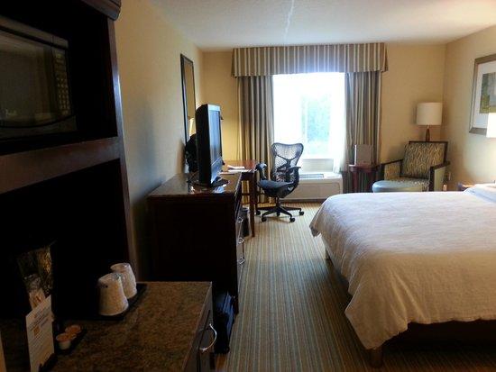 Hilton Garden Inn Lake Buena Vista/Orlando: Room