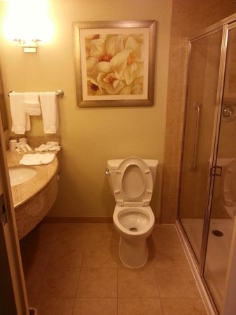 Hilton Garden Inn Lake Buena Vista/Orlando : Bathroom
