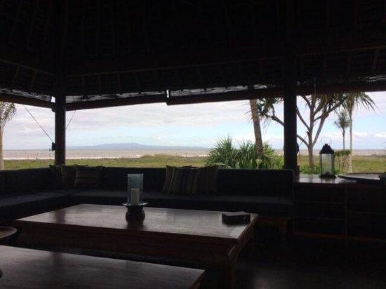 Jeeva Saba Bali : Pull house