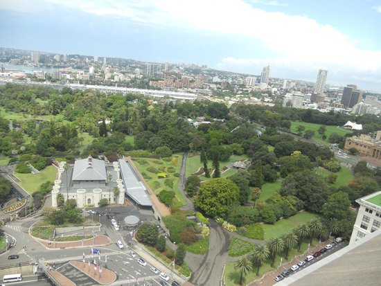 InterContinental Sydney: Botanic Garden view from Club Lounge