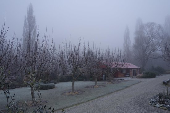 Burn Cottage Retreat: Early morning Frost