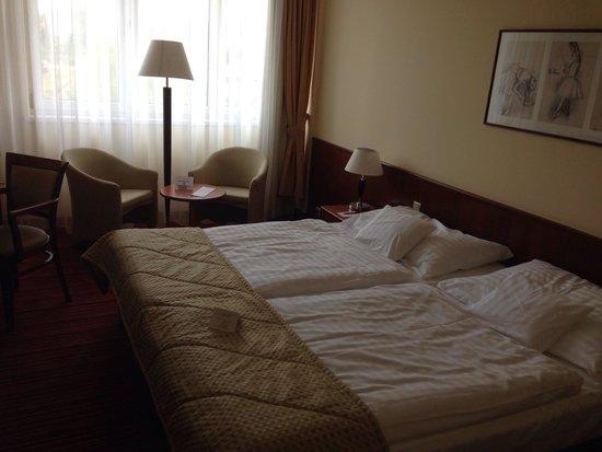 Apollo Hotel: Номер