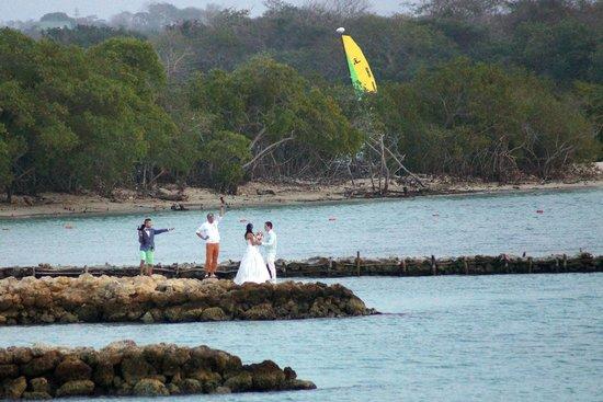 Decameron Barú: Casamiento en la playa