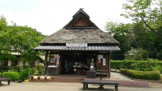 Heisei Memorial Park  Japan Showa Village : miyagemono ya