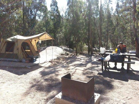 Camping site at Bald Rock Creek camping ground at Girraween National Park