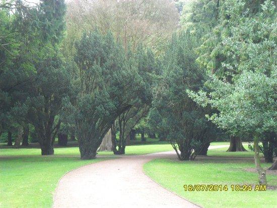 Antrim Castle Gardens: Just a random path :) July 2014.