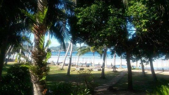 Koh Tao Cabana: vue de la mer