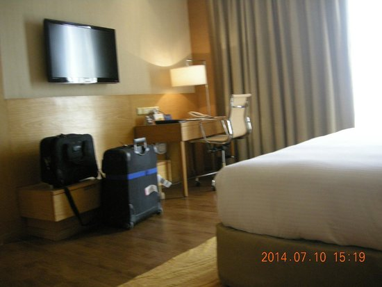 Radisson Blu Hotel New Delhi Dwarka: Room