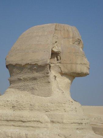 Sphinx : голова