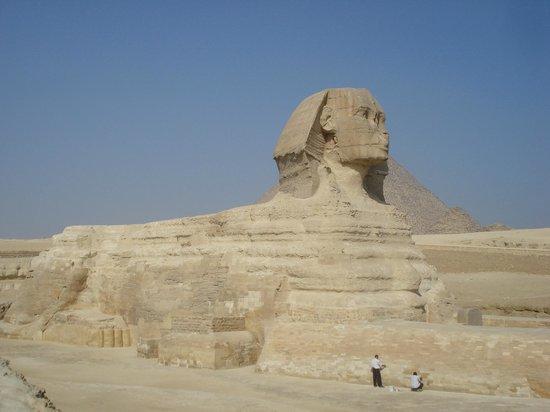 Sphinx : Сфинкс